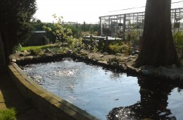 Aanleg tuin met vijver<br /><br />